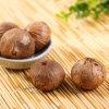 고품질 중국 100g/Bag로 만드는 단 하나 정향나무 검정 마늘