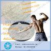 Esteroides anabólicos Sustanon 250 del polvo sin procesar para el SUS 250 del edificio del músculo