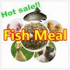 Еда рыб камсы для питания (протеина 65% 72%)