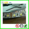 Tiras de DC24V/12V 5050 LED