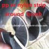 PP o cepillo redondo de nylon de la tira (YY-333)