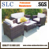 Mobilia del sofà/sofà classico/sofà (SC-B9621)