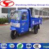三輪車またはトラックの車軸製造業者の販売のための小型トラックDumper/3 Wotorcycle Trailer/3の車輪のオートバイCargo/3の車輪のMotorheelの三輪車Passenger/3の車輪のトラック