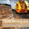 250-350 minerale metallifero dell'oro di M3/H che schiaccia pianta