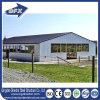 Het Huis van het Gevogelte van het Type van Structuur van het Staal van de varkensfokkerij met het Materiaal van het Metaal