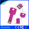 Freier Laserdruck-Edelstahl-Schlüssel USB-Stock 2GB 4GB