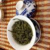 Tè organico del tè verde del tè cinese di salubrità