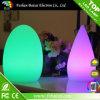 Indicatore luminoso decorativo dell'ornamento LED della Camera di natale LED