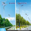 30/50/60/100W Steel Palo LED Solar Street Light (BDL90W)