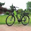 7速度のDerailleur電気都市自転車(RSEB-512)