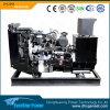 3段階の電気生成の一定の発電機の小さいディーゼル機関