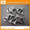 Precio de fábrica de acero inoxidable Ss 316 3/4 tornillo del martillo  ~4