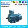 3 pH motor AC Motor à prova de explosão 45kw