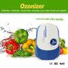 Inicio purificador de aire y generador de ozono eliminación efectiva de olor y el formaldehído