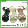 2016 sandalias planas de los nuevos diseños encantadores para la señora (RW29420)