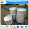Protezioni cape ellittiche della protezione di Screwd di conclusione dell'acciaio inossidabile per le caldaie