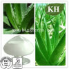 Aloe Vera Gel Freeze 200: 1 Pó seco