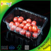 Cassetto impaccante della bolla per frutta ed alimento