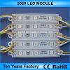 Migliore modulo 5050 12V di prezzi SMD LED
