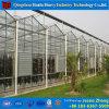 Hydroponicシステムが付いている鉄骨フレームの屋外の野菜ガラス温室