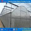 Estufa claramente comercial do túnel da tampa da película plástica para o crescimento de planta
