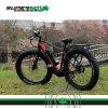 250W 8fun 중앙 모터 전기 산악 자전거