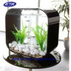 Tanque de peixes plástico acrílico do quadrado preto para a venda (BTR-Q9003)