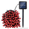 태양 강화된 100개의 LED 다채로운 옥외 크리스마스 끈 빛