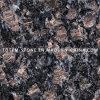 Самое низкое Price Saphire Brown Stone Granite для Tile, Countertop, Slab