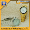 Plastic Watch in Golden / Silver Plating for Promotion (KW-006)