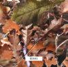 屋外のItmes (BDE81)のための葉のCamo水転送のPrinitngのフィルム