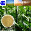 La cara de la hoja el fertilizante compuesto de aminoácidos