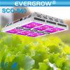 가득 차있는 Spectrum Saga 600W Hydroponic Grow Light