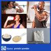 Pó o melhor da proteína do Whey da nutrição da venda por atacado do preço de fábrica