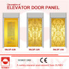 Gravure Stainless Steel Door Panel pour Elevator Cabin Decoration (SN-DP-328)