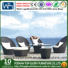 Mobilia esterna del rattan lussuoso, sofà del giardino, sofà esterno (TG-1279)