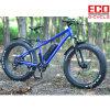 Fettes Gummireifen-Sand-Fahrrad-Strand-Fahrrad mit Lithium-Batterie