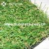 20мм True ландшафтного сада искусственных травяных (SUNQ-HY00022)