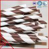 Pajas grandes para paños de papel de café Pajas de beber