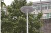 Integriertes Solargarten-Licht
