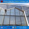 Гальванизированные парники стеклянной крышки стальной структуры используемые коммерчески для томата