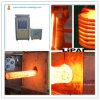forgiatrice d'acciaio automatica del riscaldamento di induzione 60kw