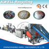Animal doméstico económico que recicla la línea de la escama de la máquina/del animal doméstico/la planta de reciclaje de la botella del animal doméstico que se lavan