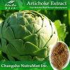 Естественное Artichoke Extract (3% до 5% Cynarin) - Made в Китае