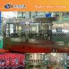Chaîne de production complètement automatique de l'eau de saveur (séries de CGN)