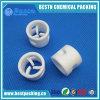 20X2X20mm de PTFE (Teflon) Anel Pall com boa qualidade