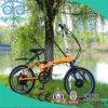 Bicicleta de dobramento elétrica da potência verde com a bateria de lítio 36V
