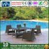 Silla de vector al aire libre de los muebles de la rota/cena de los muebles de mimbre del jardín de la silla de vector (TG-JW68)