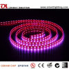 UL Ce 24VCC Waterproof SMD5050 RGB LED luces tiras