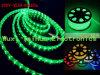 Verlichting van de Vakantie van groene Waterdichte LEIDEN /LED van de Strook de Lichte (220V-3528-60leds-g)